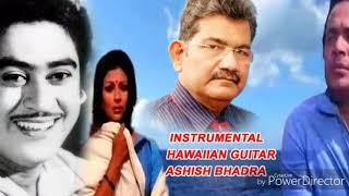 DIL AISA KISINE MERA TODA - FILM : AMANUSH - INSTRUMENTAL BY: ASHISH BHADRA - AUDIO LABEL: T-Series