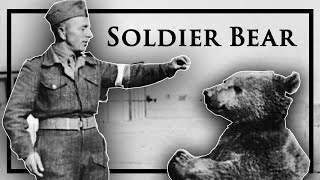 Wojtek, the Bear That Went to War