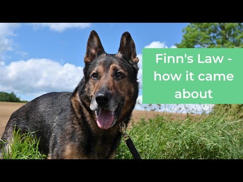 Story behind Finn's Law