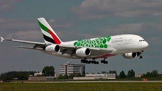 A380 ''Зеленый''  - Аэропорт Домодедово 2018