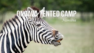 Ongava Tented Camp, Namibia