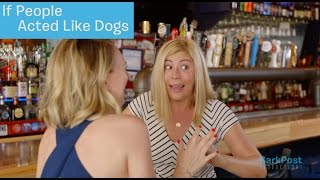 Things Could Get Real Messy Real Quick | IF PEOPLE ACTED LIKE DOGS