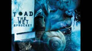 toad the wet sprocket crazy life