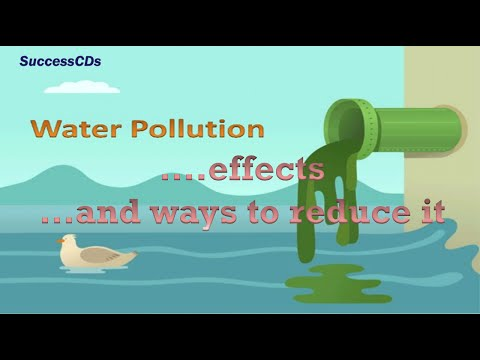 Water Pollution effects and the ways to reduce it