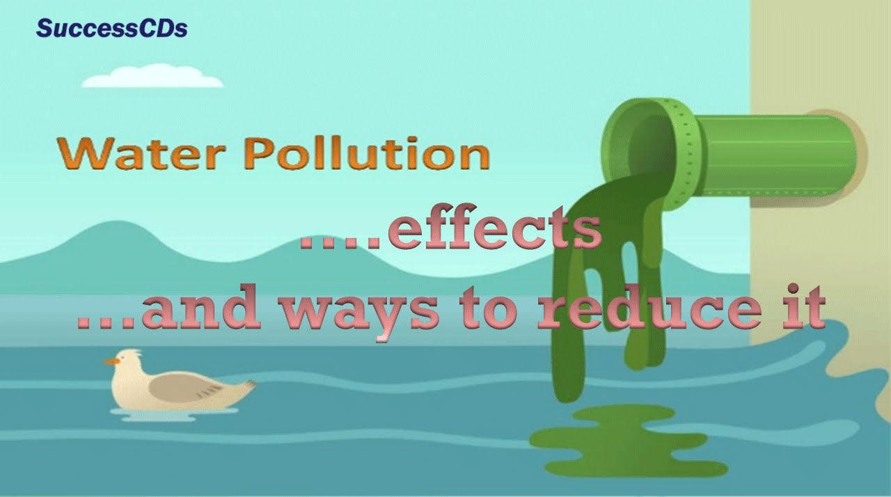 How To Reduse Pollution Water Pollution Effects And The Ways To Reduce It