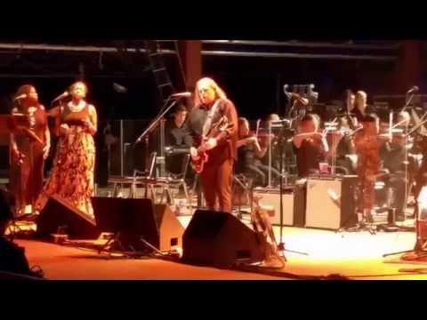 Warren Haynes Red Rocks 8116 Terrapin