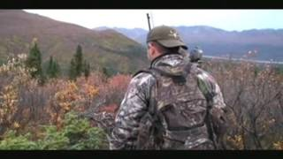"Alaska Bull moose "" Spot & Stalk"" filmed in the Beautiful Alaska Range"