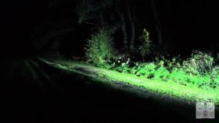 Lupine Rotlicht - Demonstration der Bremslichtfunktion