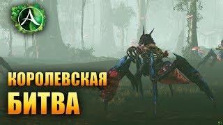 ArcheAge - ЛУЧШИЙ ТУРНИР: