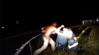 DashCam Video: Deputy Shoots and kills suspect after scuffle in Florida