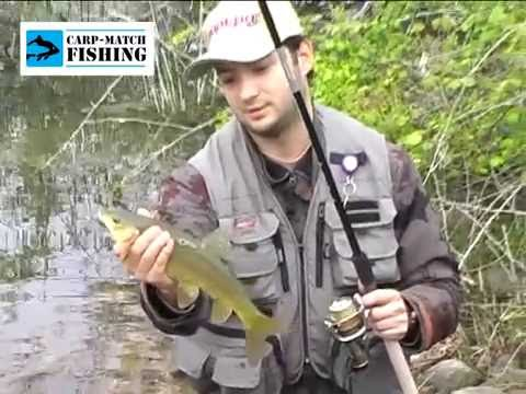 Match fishing youtube for Ultimate match fishing