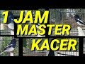1 Jam Masteran Kacer Ngeban(.mp3 .mp4) Mp3 - Mp4 Download