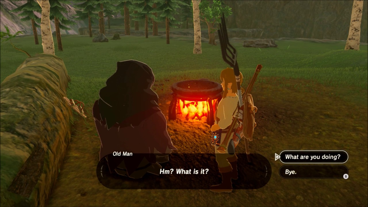 Breath Of The Wild Hidden Quest Warm Doublet For Spicy Meat And