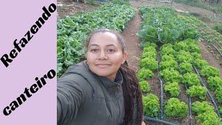 Fazendo Canteiro e Plantando Hortaliças no Sítio