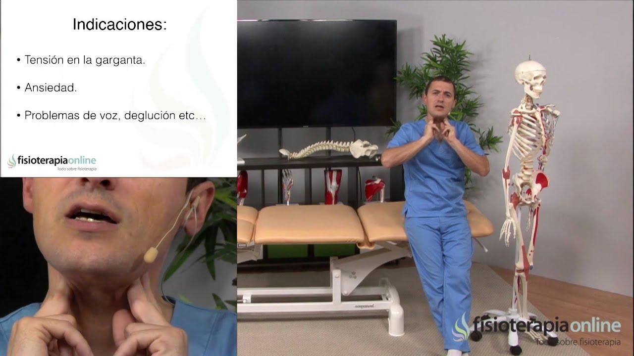 Tratamiento del dolor muscular de cuello y garganta - Fisioterapia ...