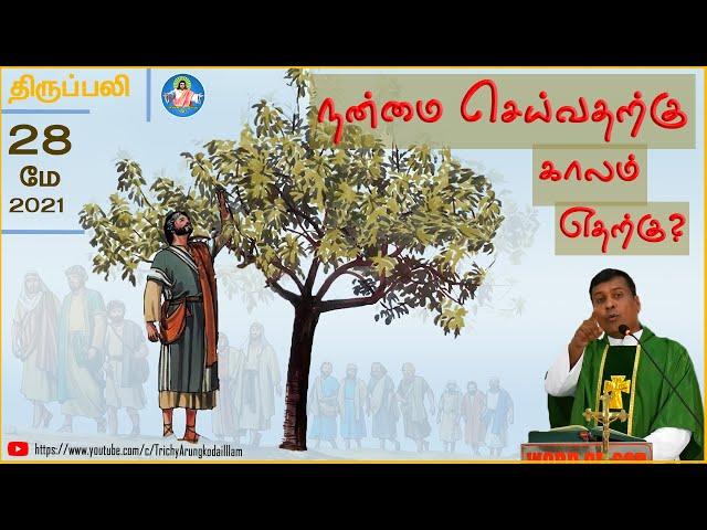 28-05-2021 | திருப்பலி | நன்மை செய்வதற்கு காலம் எதற்கு? | Rev.Fr.Albert | Trichy Arungkodai illam
