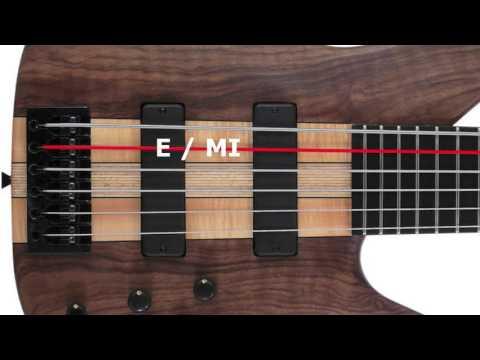 Six Strings Bass Tuner