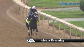 Always Dreaming 2017 Kentucky Derby Hopeful 4.28