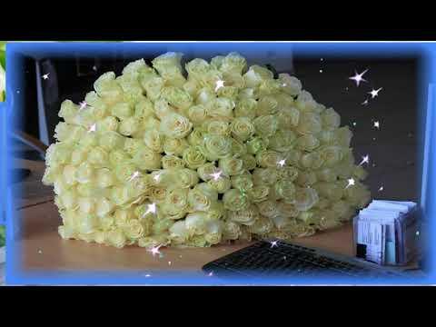 Белые розы -   символ чистой любви...