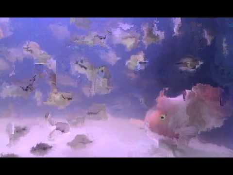 Red parrot fish baby