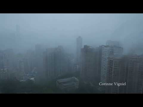 Wuthering heights as typhoon Hato  天鴿 pounds Hong kong