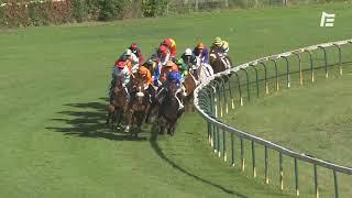 Vidéo de la course PMU HANDICAP DE MARSEILLE