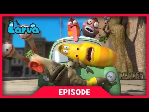 LARVA - MINI CAR | Cartoon Movie | Cartoons For Children | Larva Cartoon | LARVA Official