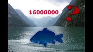 Русская Рыбалка 3.99 Квест Карпы Кои