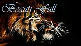 Тигры | Обои для рабочего стола