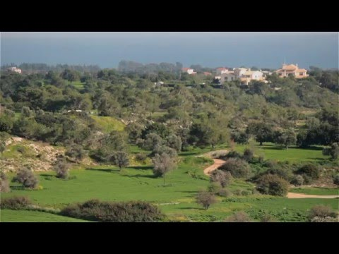 Mazotos Cyprus Panorama