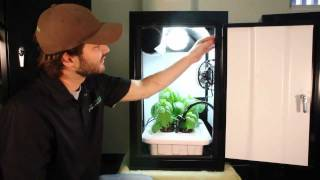 Hydroponic Grow Box works best! Growing kit by Supercloset