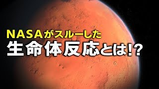 NASAが火星の生命体反応をスルー?人類移住より先に○○…!