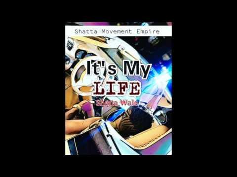 Shatta Wale - It's My Life [Sarkodie Diss] (Audio Slide)