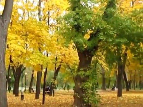 осень в ижевске фото