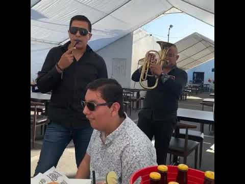 Download TOROMAX BAILANDO BANDA Y COMIENDO EMPANADAS
