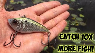 This Simple Lipless Crankbait Fishing Technique Will Change Your Life Catch 10x MORE FISH