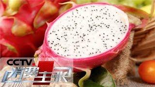 《消费主张》 20190508 水果里的消费升级:燕窝果你吃过吗?| CCTV财经