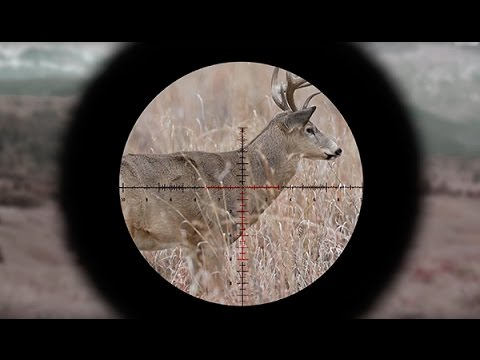 Understanding First Vs. Second Focal Plane Reticles