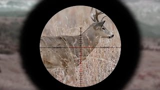 Video Understanding First Vs. Second Focal Plane Reticles download MP3, 3GP, MP4, WEBM, AVI, FLV Agustus 2018