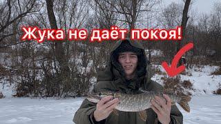 Рыбалка на жерлицы на микро речке Щука прёт