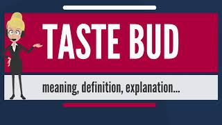 What is TASTE BUD? What does TASTE BUD mean? TASTE BUD meaning, definition & explanation
