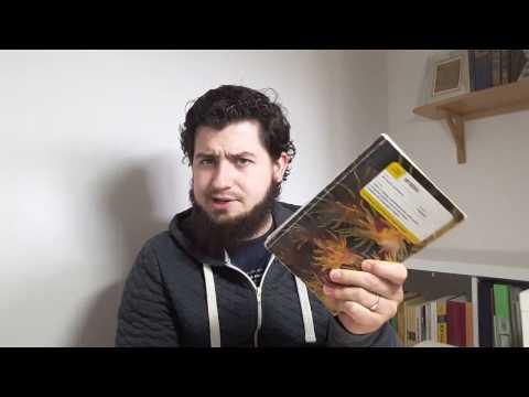 HOW I LEARNT ARABIC. Never met an Arab. ARABIC WITH SAM