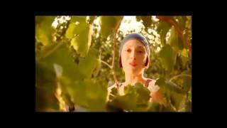 Repeat youtube video La vera pubblicità di ronco san crispino