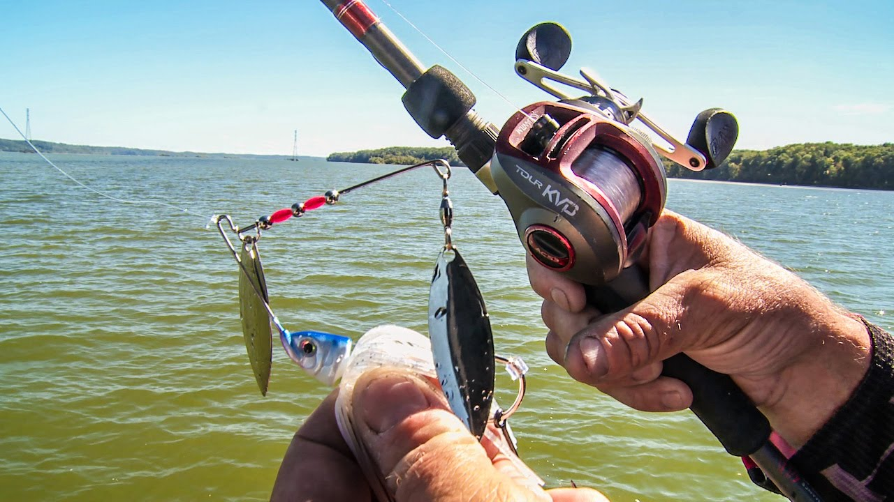 Kvd s secrets to power fishing spinnerbaits youtube for Youtube fishing video