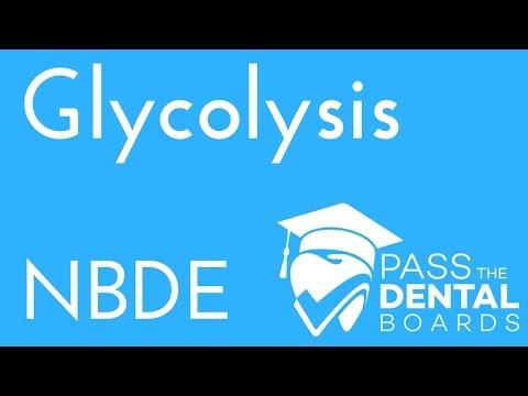Glycolysis - Biochemistry - NBDE
