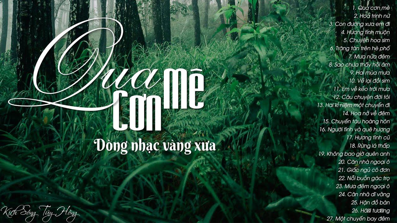 100 bài nhạc vàng xưa khiến ngàn con tim xao xuyến - LK Qua cơn mê, Hoa trinh nữ