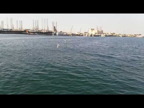 UAE Sharjah Beach(1)