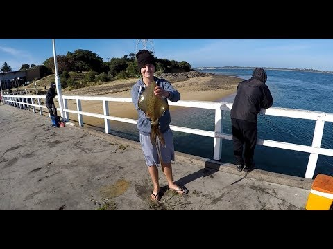 HUGE SQUID! Jetty Fishing