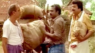 മറക്കാൻ കഴിയുമോ മണിച്ചേട്ടന്റെ പഴയകാല കോമഡി  Kalabhavan Mani Comedy Scenes   Malayalam Comedy Scenes