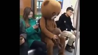 Мишка в метро. Прикол ))